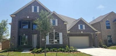 Lakes Of Savannah Single Family Home For Sale: 4619 Prairie Springs Lane