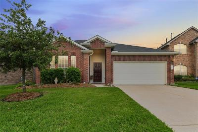 Katy Single Family Home For Sale: 24715 Hikers Bend Drive