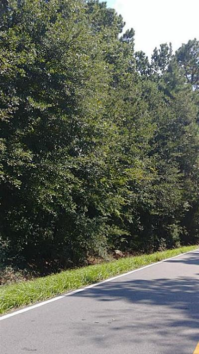 Conroe Residential Lots & Land For Sale: Lot 2 Lake Chateau Woods Parkway