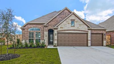 Texas City Single Family Home For Sale: 12723 White Cove Drive