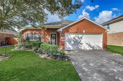 League City Single Family Home For Sale: 2626 White Ibis Court
