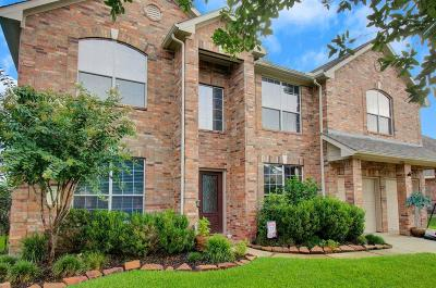 Tomball Single Family Home For Sale: 12622 Twin Flower Drive