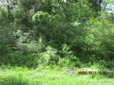 Angleton TX Residential Lots & Land For Sale: $28,000