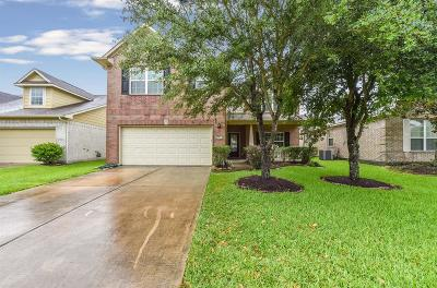 Pearland Single Family Home For Sale: 2616 Golden Creek Lane