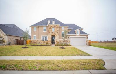 Katy Single Family Home For Sale: 1411 Windy Thicket Lane