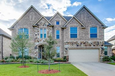 Tomball Single Family Home For Sale: 13307 Coolidge Creek Drive