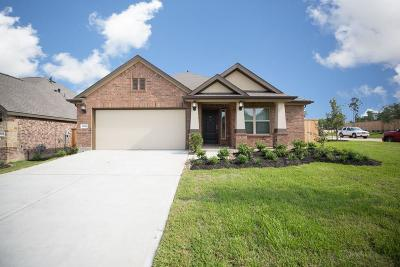 Single Family Home For Sale: 2620 Bright Rock Lane