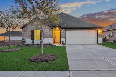 Rosharon Single Family Home For Sale: 9211 Waldrick Trace Drive