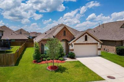 Baytown Single Family Home For Sale: 4811 E Chase Street