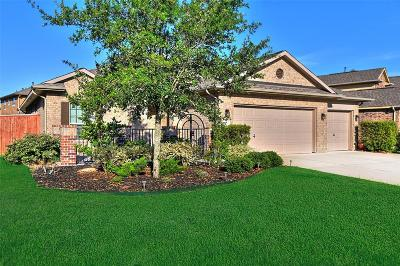 Single Family Home For Sale: 4106 Addison Ranch Lane