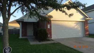 Katy Single Family Home For Sale: 19219 Canaras Court