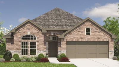 Rosenberg Single Family Home For Sale: 511 Yellow Bullhead