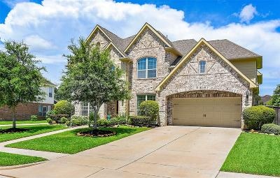 Fort Bend County Single Family Home For Sale: 8415 Port Branch Drive