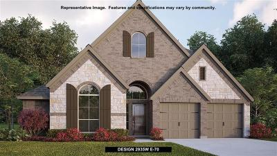 Conroe Single Family Home For Sale: 158 Painted Trillium Drive