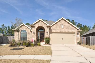Porter Single Family Home For Sale: 23107 Mestina Knoll Drive