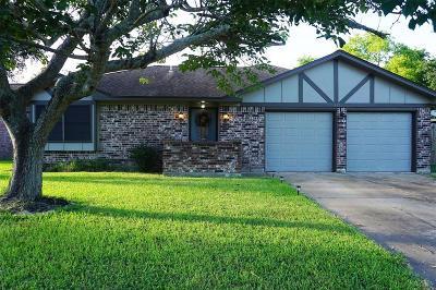 Angleton Single Family Home For Sale: 333 Munson Court