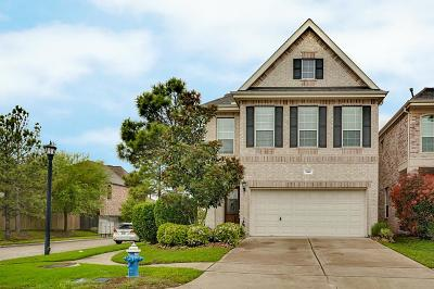 Houston Single Family Home For Sale: 1146 Sopris Drive