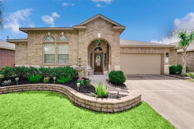 Dickinson Single Family Home For Sale: 6545 Gray Birch Lane
