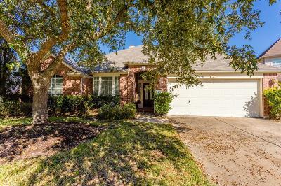 Houston Single Family Home For Sale: 13622 Treebank Lane