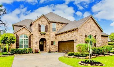 The Woodlands Single Family Home For Sale: 226 Greylake Place