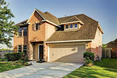 Pearland Single Family Home For Sale: 6402 Hillock Lane