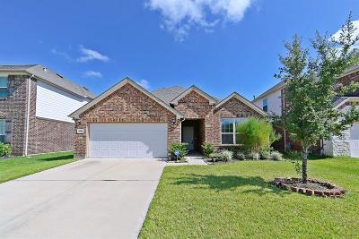 Katy Single Family Home For Sale: 26014 Haggard Nest Drive