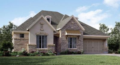 Tomball Single Family Home For Sale: 13707 Nearpoint Lane