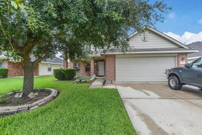 Houston Single Family Home For Sale: 2831 Trinity Glen Lane