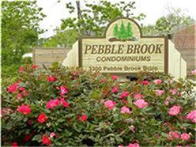 Seabrook Rental For Rent: 3300 Pebblebrook Drive #4