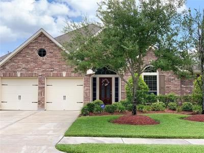 Katy Single Family Home For Sale: 4119 Elk Bluff Lane
