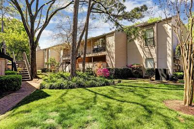 Houston TX Condo/Townhouse For Sale: $130,000