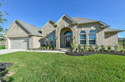 Rosharon Single Family Home For Sale: 2707 Silver Falls Lane
