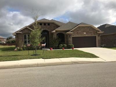 San Antonio Single Family Home For Sale: 14719 Rifleman Road