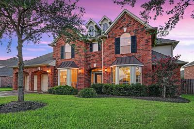 Shadow Creek Ranch Single Family Home For Sale: 12009 Opal Creek Drive