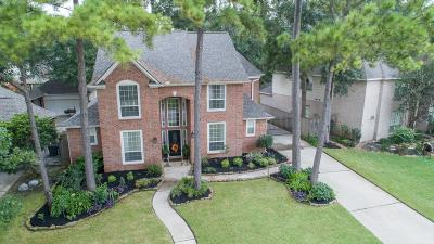 Tomball Single Family Home For Sale: 11934 Gatesden Drive