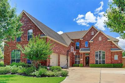Sugar Land Single Family Home For Sale: 2011 Shadow Bend Drive