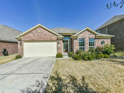 Conroe Single Family Home For Sale: 9925 Western Ridge Way