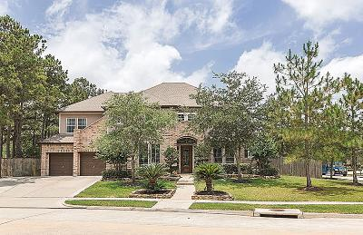 Katy Single Family Home For Sale: 4815 Hollowvine Lane