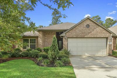 Houston Single Family Home For Sale: 12806 Bridle Springs Lane