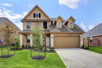 Missouri City Single Family Home For Sale: 3815 Venosa Court