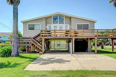 Galveston Single Family Home For Sale: 3915 Reeves Drive