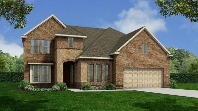 Katy Single Family Home For Sale: 28239 Moon Portrait Lane