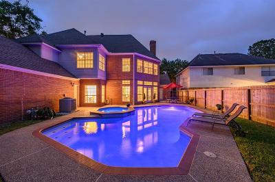 Katy Single Family Home For Sale: 20519 Chapel Glen Court