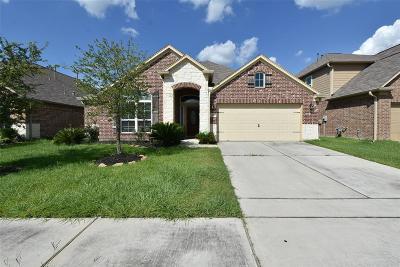Houston Single Family Home For Sale: 14518 Gable Mountain Circle