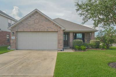 League City Single Family Home For Sale: 3032 Boxwood Springs Lane