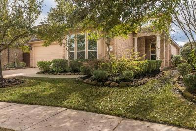 Manvel Single Family Home For Sale: 2606 Rippling Bend Drive