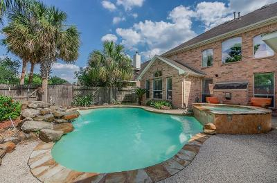 Pearland Single Family Home For Sale: 11607 Summer Moon Drive