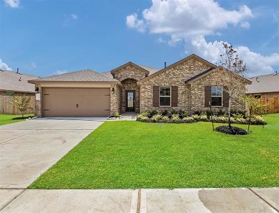 Missouri City Single Family Home For Sale: 1223 Bellingham Court