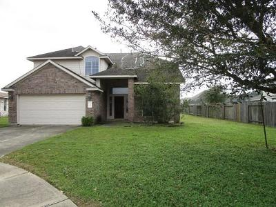 Katy Single Family Home For Sale: 19111 Oakfield Village Lane