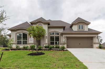 Conroe Single Family Home For Sale: 1603 Graystone Hills Drive